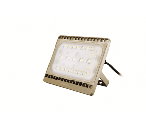 PHILIPS BVP 161 LED /CW 50W  WB GOLD CON TEMPO FLOOD LIGHT